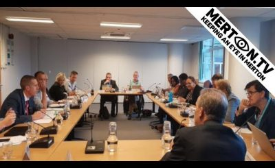 South West London and Surrey Joint Health Overview and Scrutiny Committee 30 July 2019